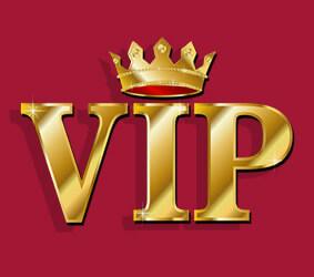 بخش VIP بدون نیاز به افزونه