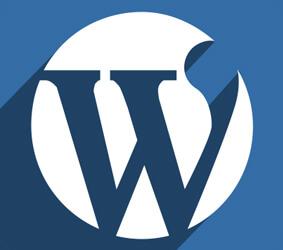 رفع مشکل ورود به وردپرس بعد از تغییر URL